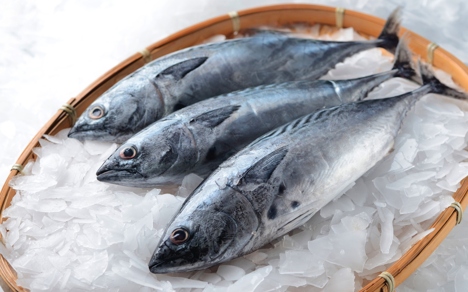 High quality bonito (albacore) . World-Class Ingredients in your Kitchen. Khayyan Specialty Foods, importers, manufacturers and distributors of fine Products from Spain in West New York, NJ.