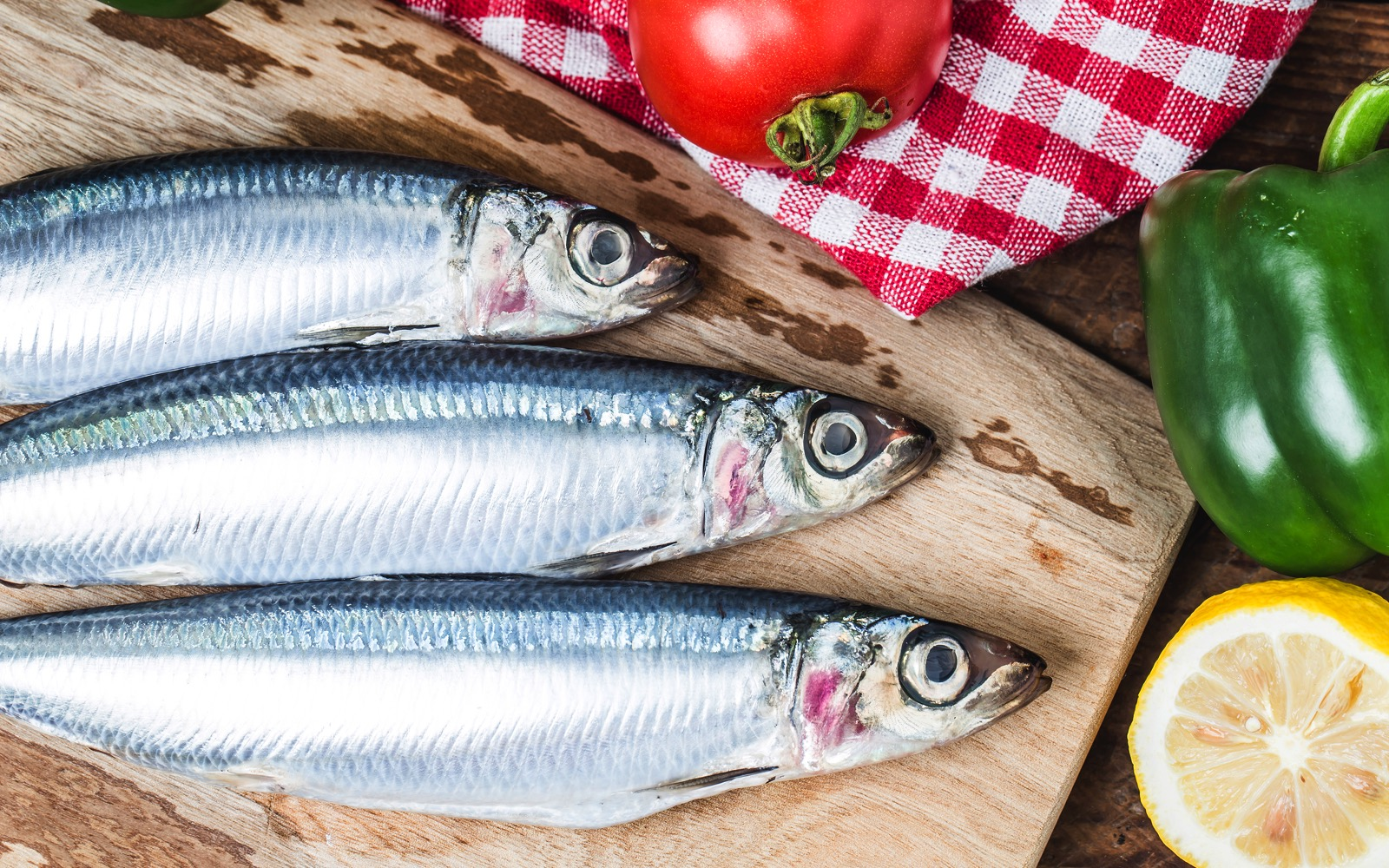 High quality sardines. World-Class Ingredients in your Kitchen. Khayyan Specialty Foods, importers, manufacturers and distributors of fine Products from Spain in West New York, NJ.